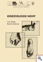 Kineziologie_nohy1